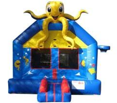 Tampa Bounce House Rental