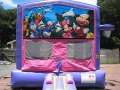 Mickey and Friends Pink and Purple Bounce w/Hoops UNIT #103
