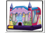 Disney Princess Slide Combo DRY