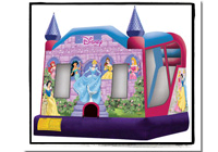 Disney Princess Slide Combo C4 WET