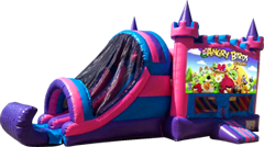 Angry Birds Pink and Purple Castle Combo Dry