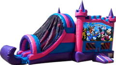 Mickey Clubhouse Pink and Purple Castle Combo Dry
