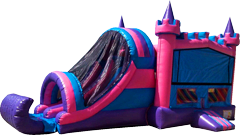 Pink and Purple Castle Combo Dry