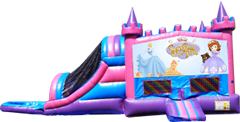 Sofia Pink and Purple Castle Combo Wet