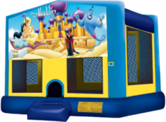 Aladdin Large 15x15 Fun House