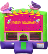 Butterfly Birthday 13x13 Fun House