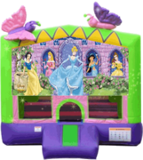 Disney Princess Butterfly 13x13 Fun House