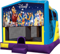 World of Disney Large C4 Dry Combo with Slide & Basketball Hoop