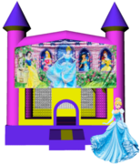 Disney Princess Castle 13x13 Fun House