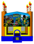 Ninja Turtles Birthday Cake 13x13 Fun House