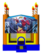 Spiderman Birthday Cake 13x13 Fun House