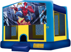 Spiderman Large 15x15 Fun House