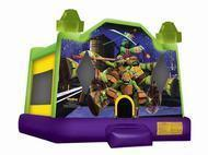 Standard Bounce Houses (15ft x 15ft)