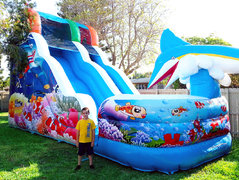 18' DOLPHIN BAY SLIDE W/ POOL