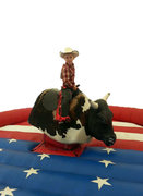 BT-SPO-MBUL - Mechanical Bull