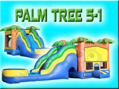 Palm Tree 5-1 with Waterslide