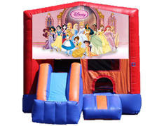 3-in-1 Combo with Front Slide - Princesses (Dry)