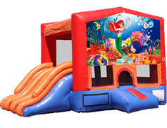 4-in-1 Combo with Double Slides - Little Mermaid (Dry)