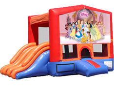 4-in-1 Combo with Double Slides - Princesses (Dry)