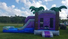 Combo Bounce House w/Wet or Dry Slide