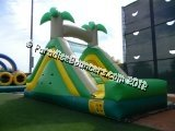 12' Tropical Slide