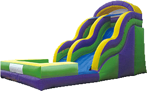 17 FT Purple Ninja Slide
