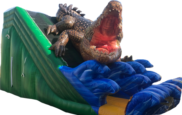 20' Alligator Slide (dry only, dual lanes)