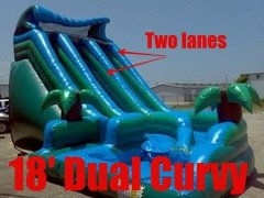18 ft Dual Curvy (pool, dual lanes)