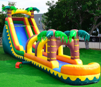 18 ft Aloha Slide (w/pool or slip