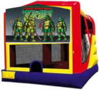 Teenage Mutant Ninja Turtles Combo Style 2
