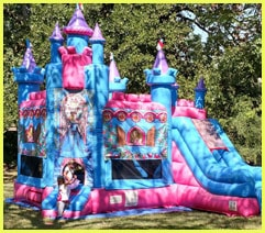 Princess Castle Rental