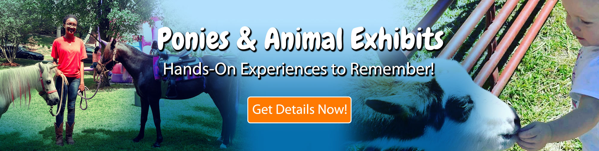 Pony Rides & Animal Exhibits