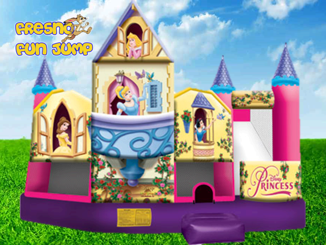 Deluxe Disney Princess Collection