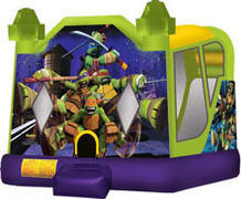 Water Fun Ninja Turtles Combo Bouncer