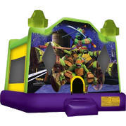 Ninja Turtles Bouncer CP117