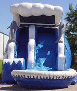 18 ft Dolphin water slide