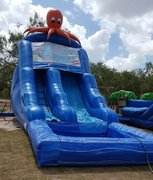 20 ft Octopus Wet Slide
