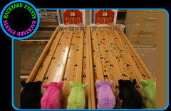 Pig Race $199.00 DISCOUNTED PRICES