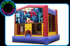 Spiderman $337.00 DISCOUNTED PRICE