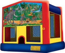 Jungle fun 4 in 1  DISCOUNTED PRICE