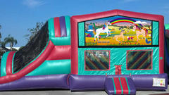 Horse Lover Little Pony Modular Bounce Combo Double Slide