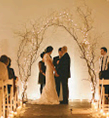 Twig Arch with White Lights