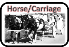Horse Drawn Carriage Rentals