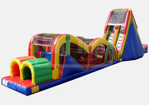 Backyard Obstacle Course w/slide