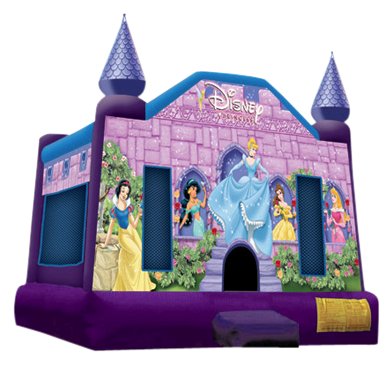 Disney Princess Castle