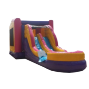 Pink Dual Lane Combo Water Slide