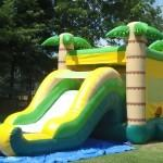 Tropical Combo Water Slide