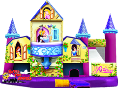 Disney Princess 3D 5 in 1 Combo 204 or 211