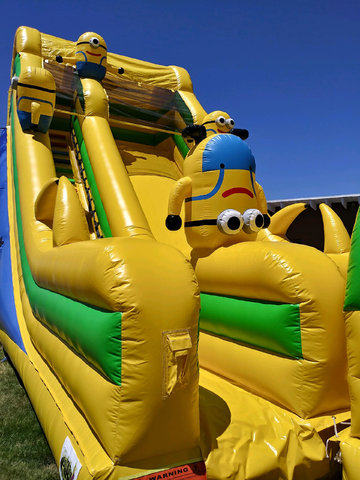 Minion Waterslide with Pool