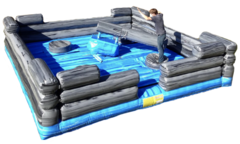 Log Slammer / Wipeout 4 player